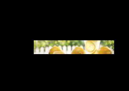 Echtglas-Rueckwand-Zitrone-Frisch-Limonade
